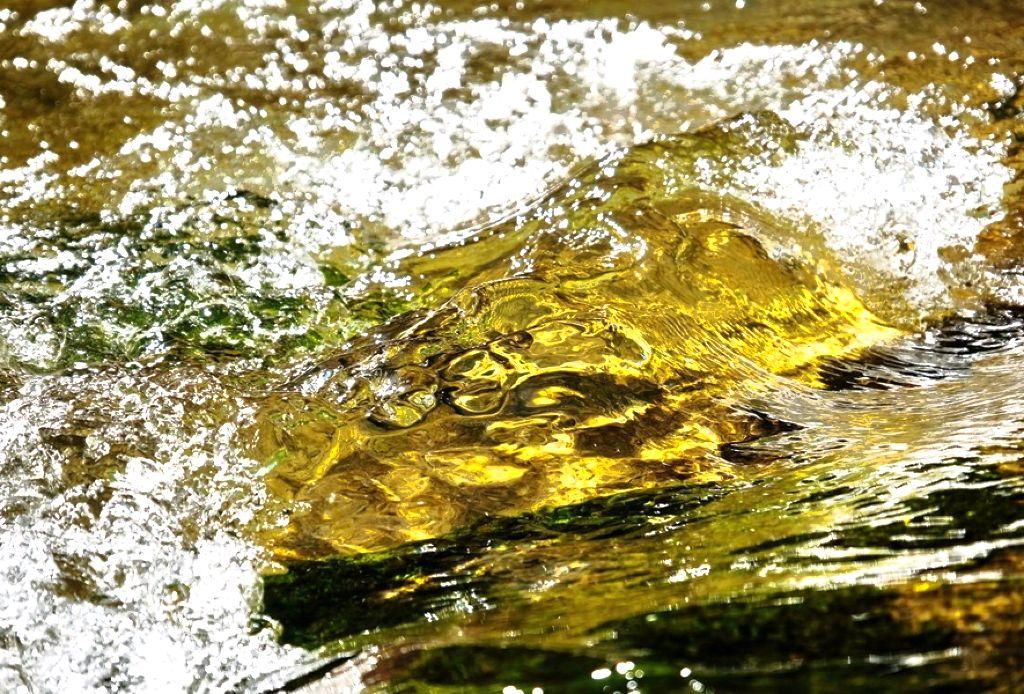 Поиск золота в водопаде